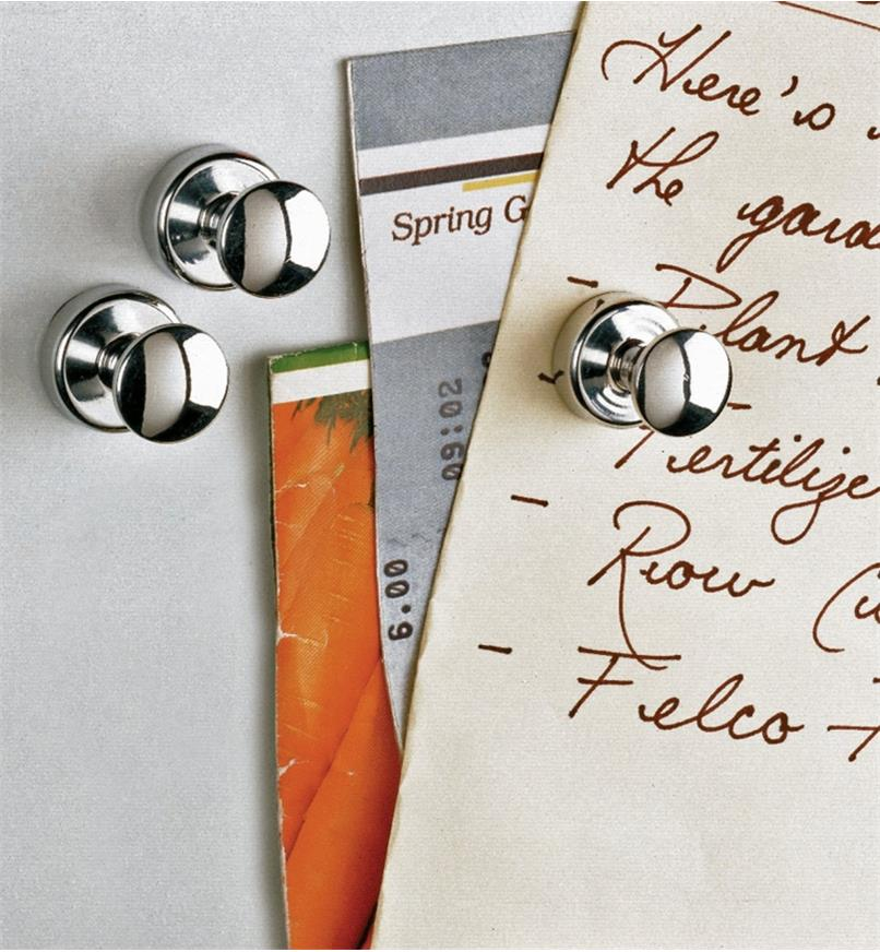 Three fridge magnets on a fridge, one holding up a grocery list and other paper items