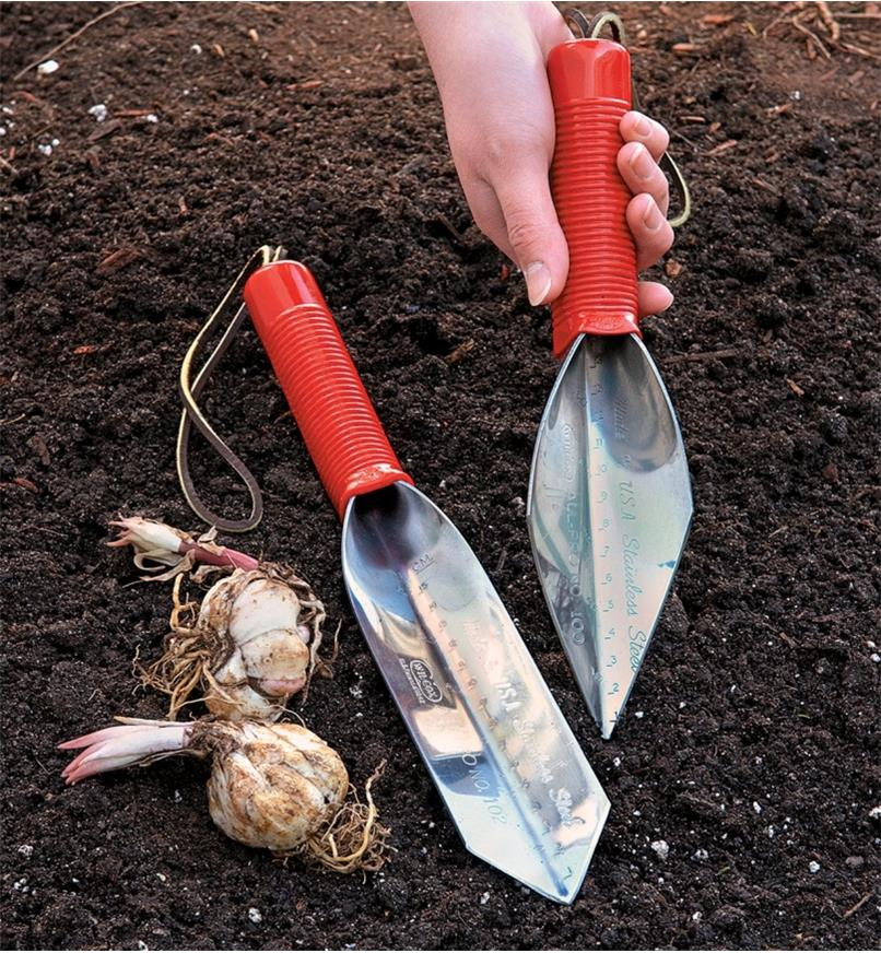 Spear-point trowel held in a hand and transplant trowel resting on soil next to garlic bulbs