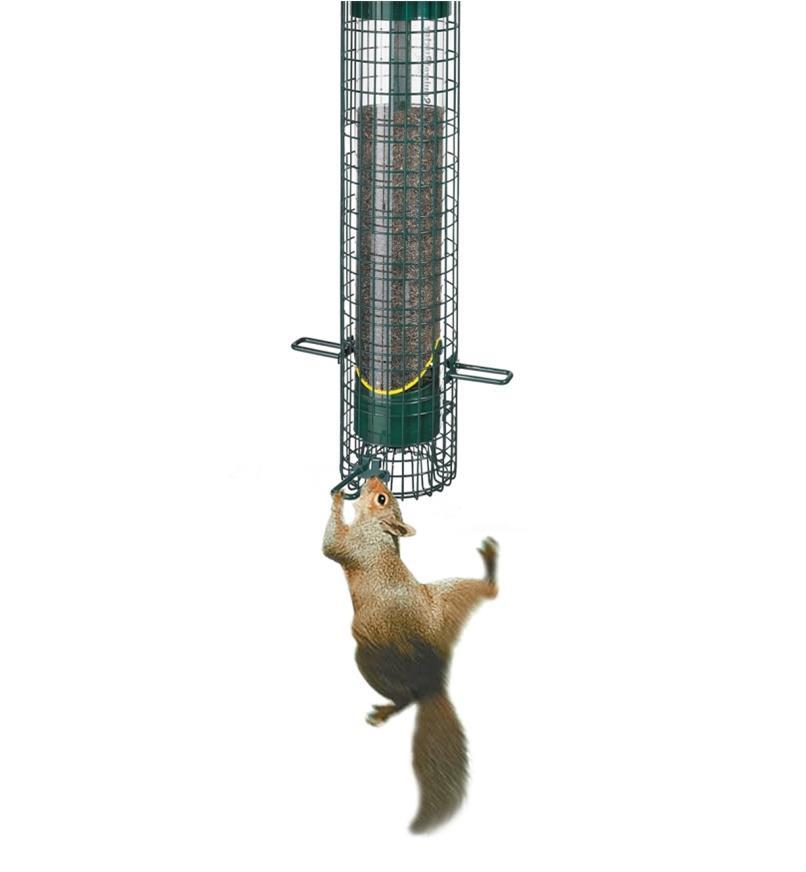 AG308 - Squirrel Buster Finch  Feeder