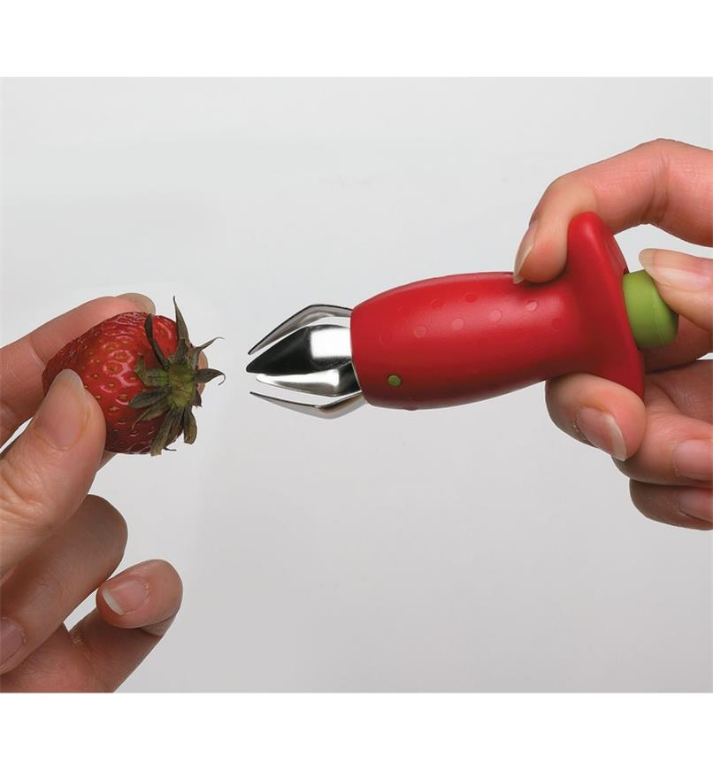 Pressing the rear button on the Strawberry Huller to open the jaws in preparation for hulling a strawberry