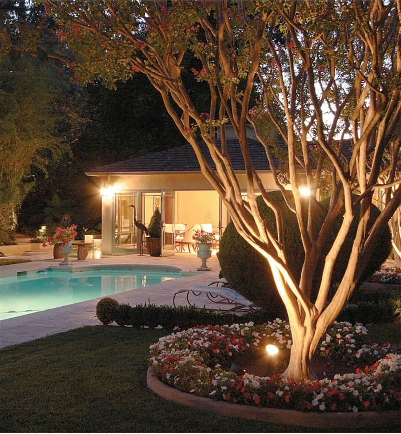 White Landscape Lights installed on a backyard pool deck