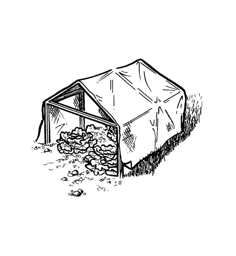 Illustration of a shade house made with shade cloth on a wooden frame
