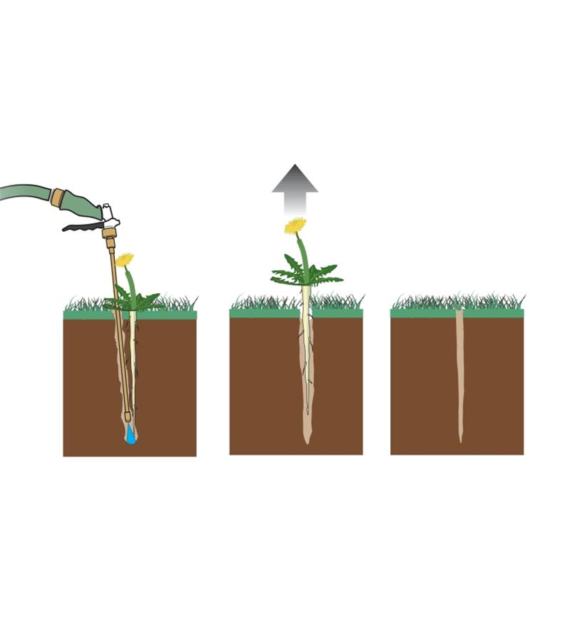 Illustration shows steps of removing weed: use weeder wand to create hole, pull out weed, hole fills itself