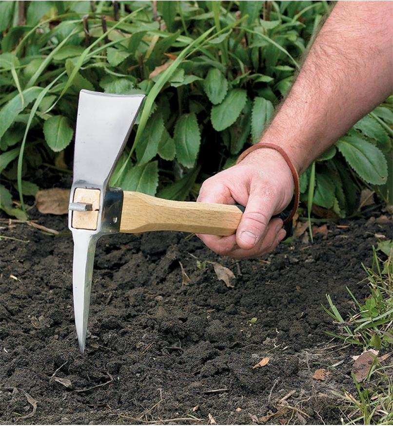 Breaking up soil with a Pick Mattock