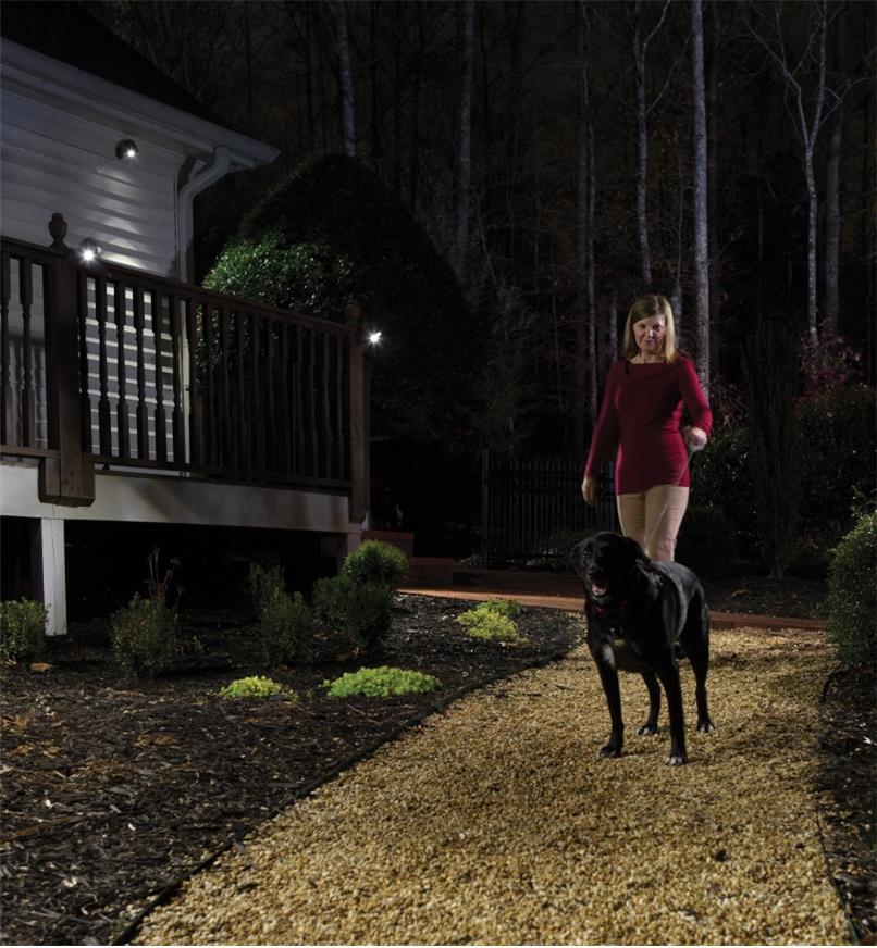 NetBright Synchronized Outdoor LED Floodlights