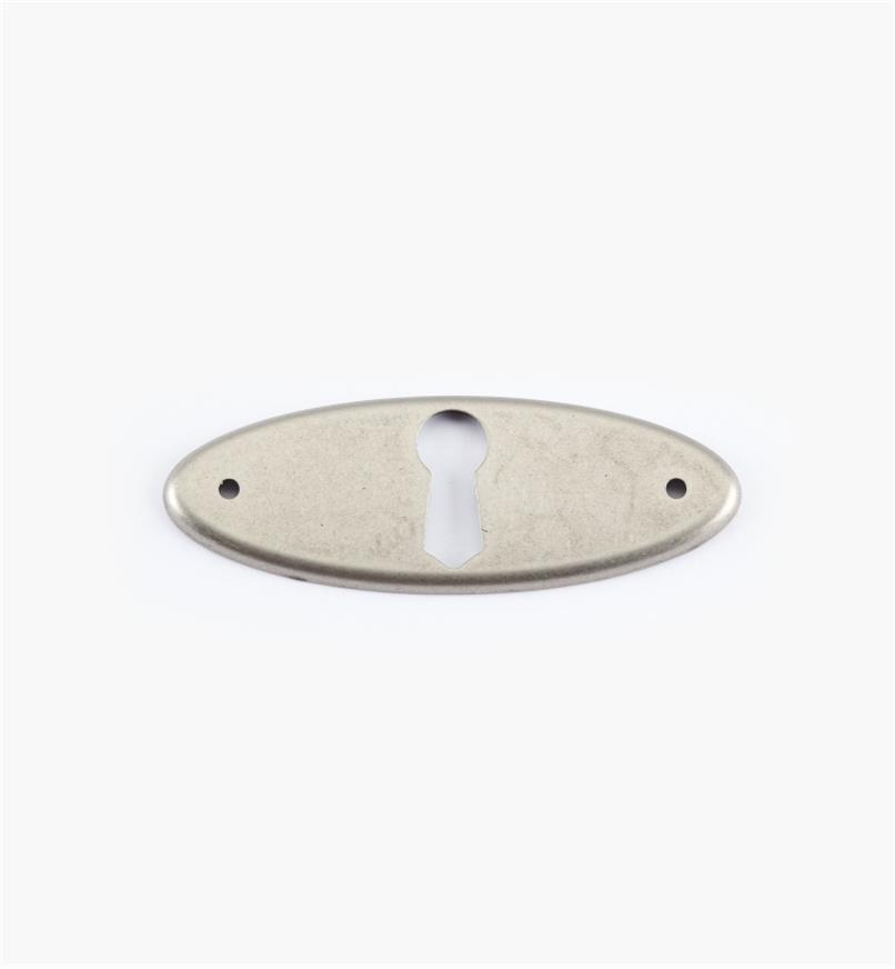 01X3022 - 65mm x 24mm Pewter Horizontal Escutcheon