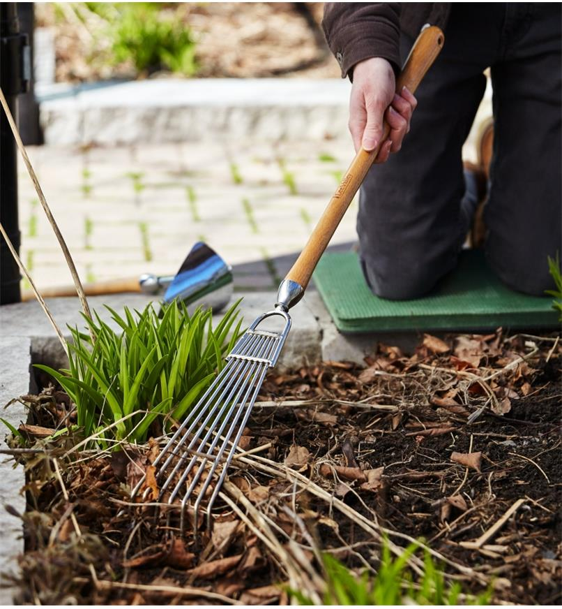 Raking leaves from between plants using the Mid-Length Bed Rake