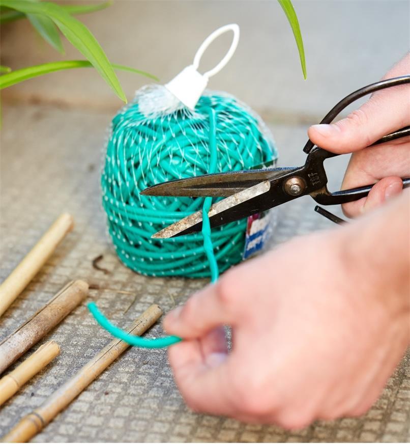 Jardinier coupant une longueur d'attache élastique pour plantes de la pelote de 100 pi avec des ciseaux
