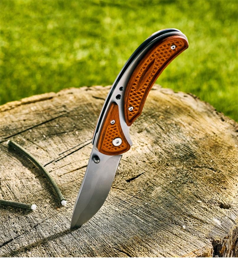 Frame-lock folding knife stuck point-first in a stump