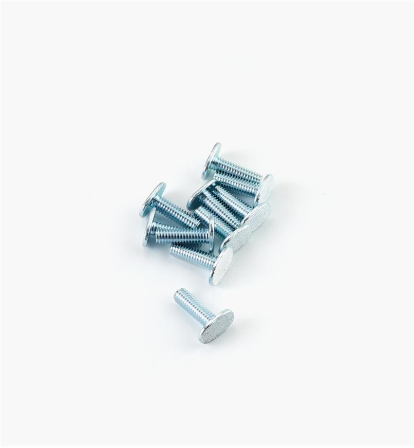 12K7962 - Boulon pour coulisse en T5/16-18 de 1po, lepaquet de10