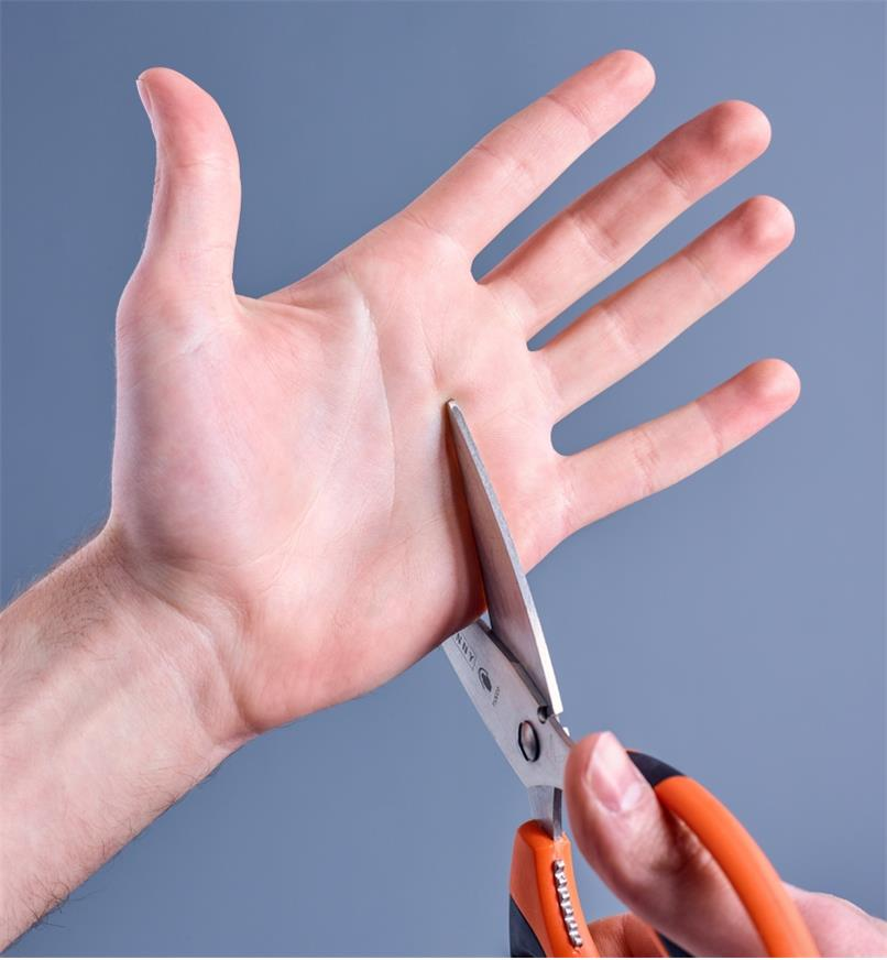 09A0968 - Multi-Purpose Safety Scissors