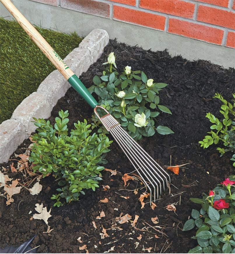 Raking in leaves in a garden with the Lee Valley Bed Rake