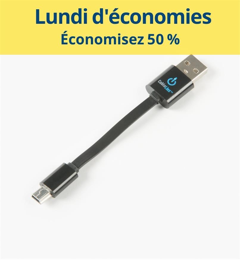 CM1081 - Câble USB vers mini USB