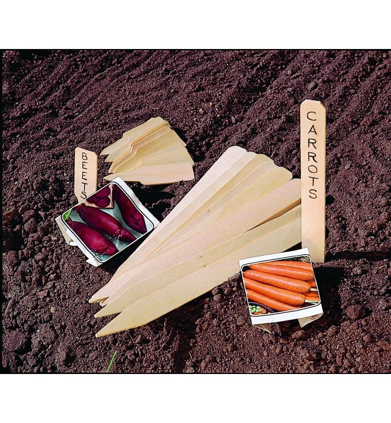 Wooden Markers splayed on garden soil, with one of each size used to mark carrots and beets