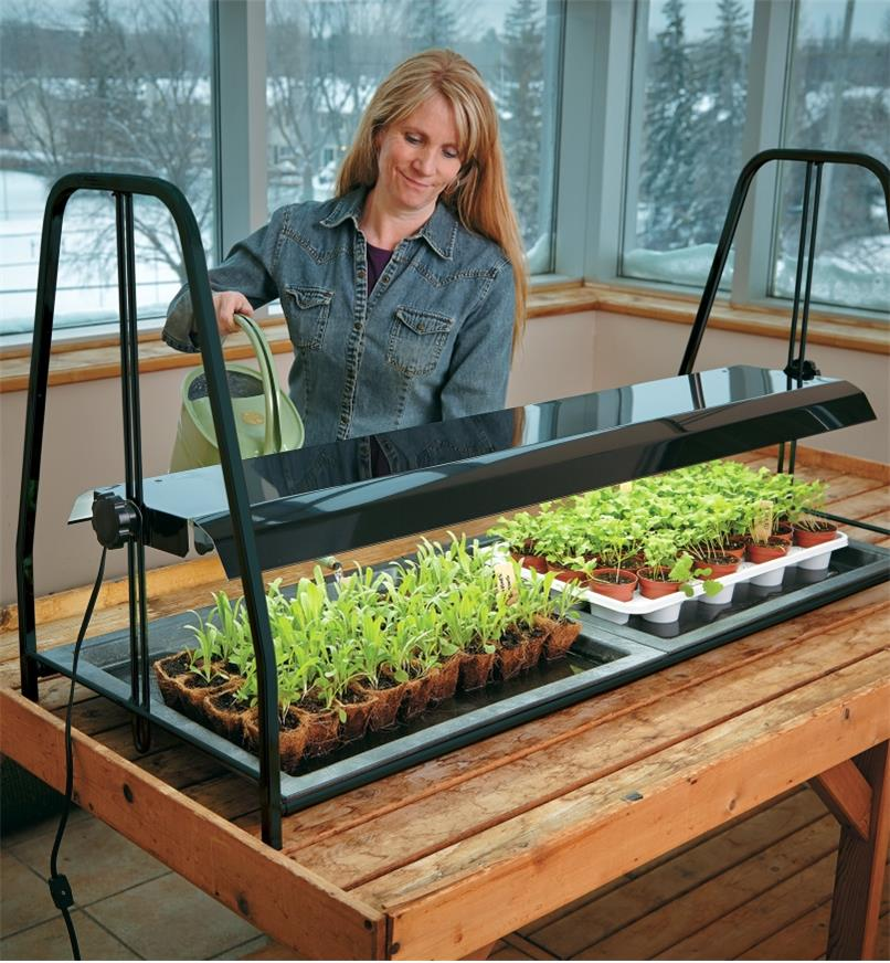 A woman waters seedlings growing under the Tabletop Floralight T5 LED Full-Spectrum Grow-Light Stand