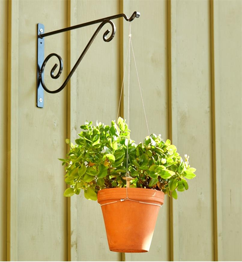 A plant-filled container set in the stainless-steel adjustable pot hanger is suspended from a wall bracket
