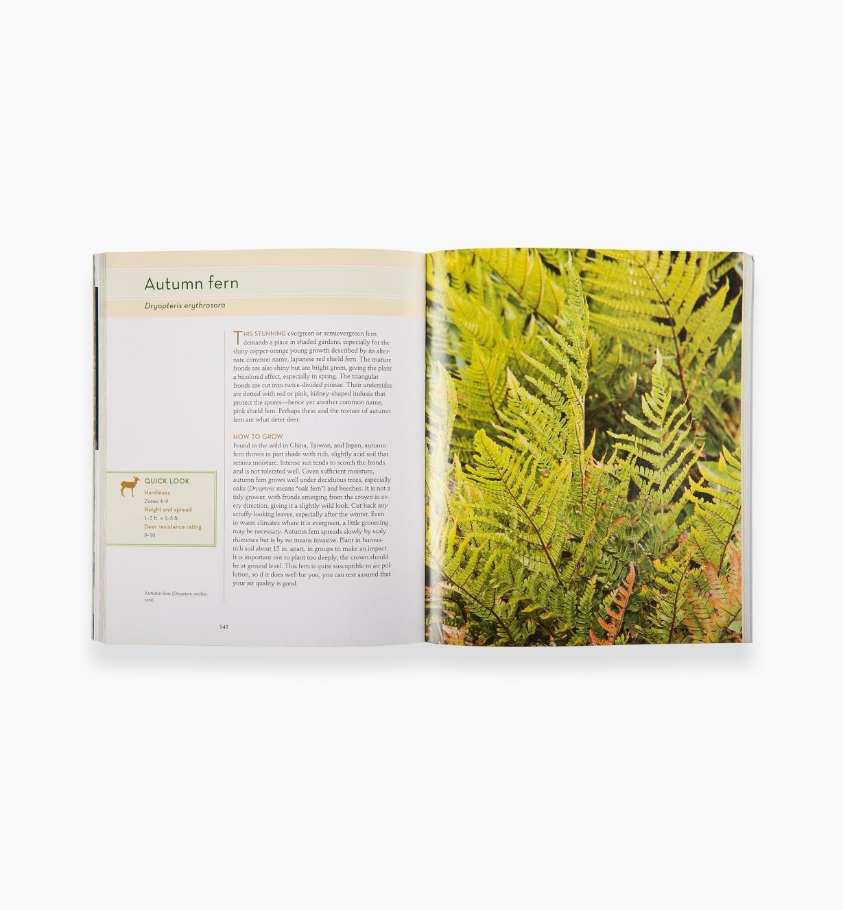LA954 - 50 Beautiful Deer-Resistant Plants
