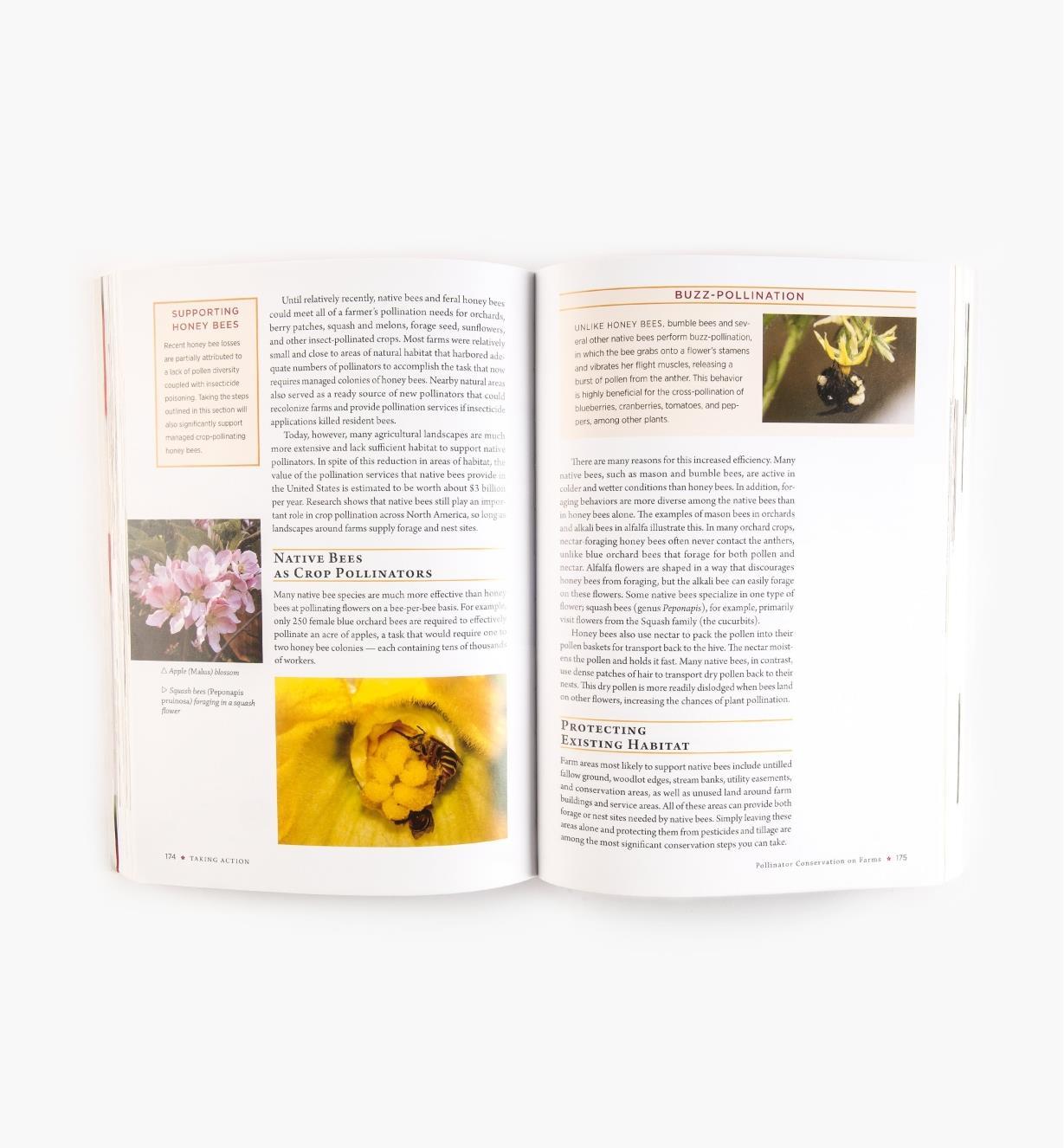 LA948 - Attracting Native Pollinators