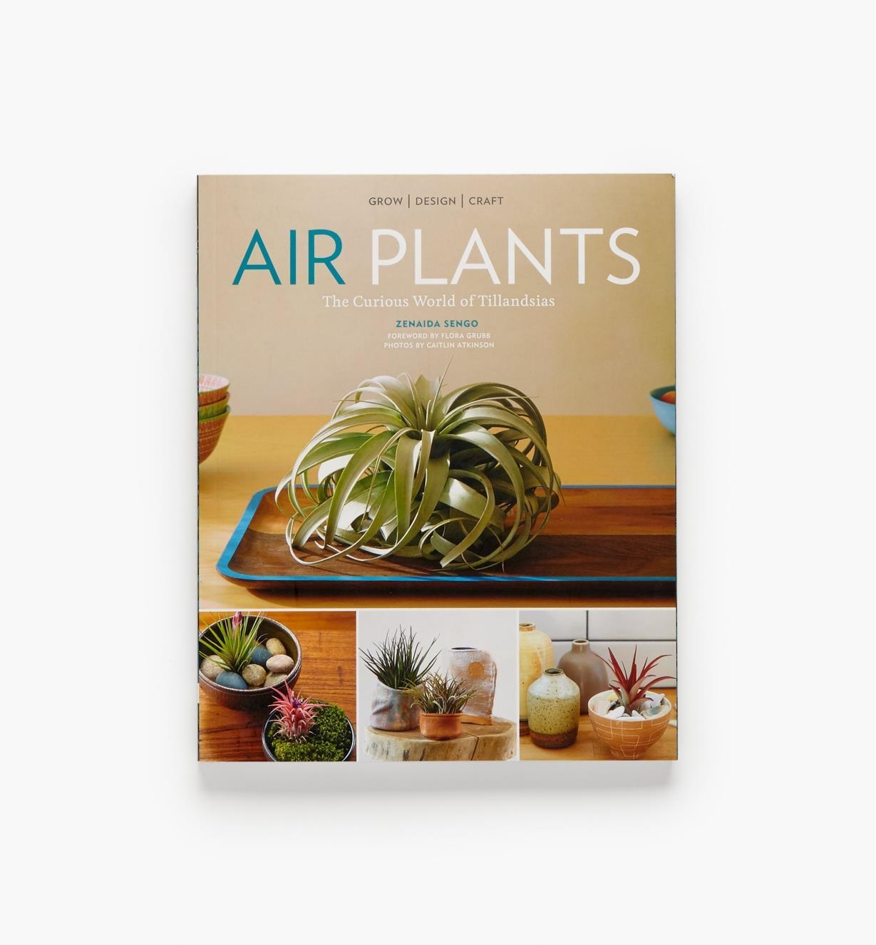 LA963 - Air Plants
