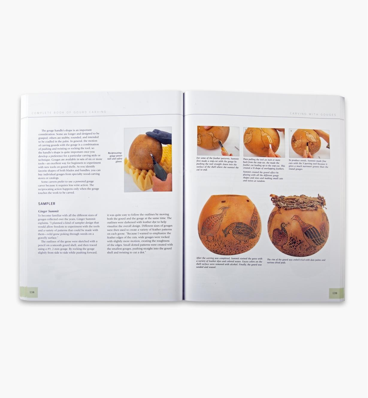 49L5097 - Complete Book of Gourd Carving