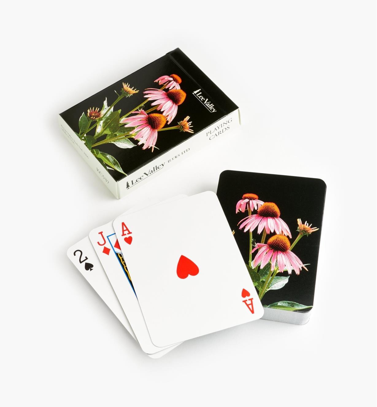 KC537 - Echinacea Cards