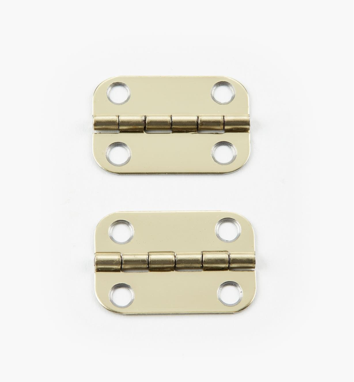 00D3130 - 30mm x 20mm Round Edge Hinges, pr.