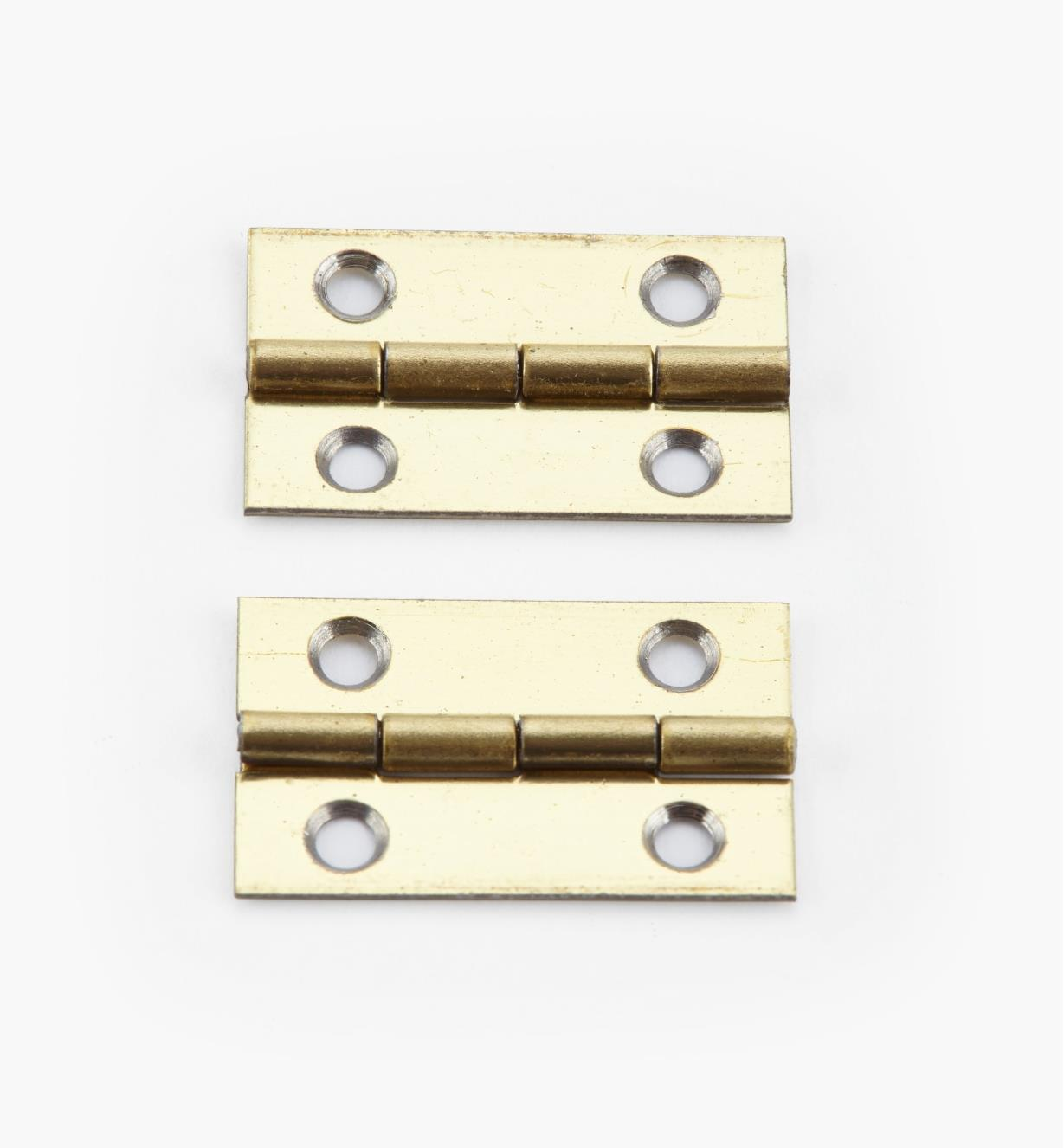 00D3004 - 20mm x 13mm Small Box Hinges, pr.
