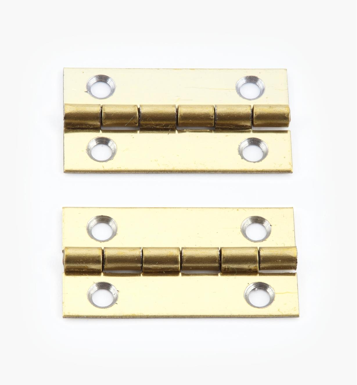 00D3011 - 30mm x 17mm Small Box Hinges, pr.