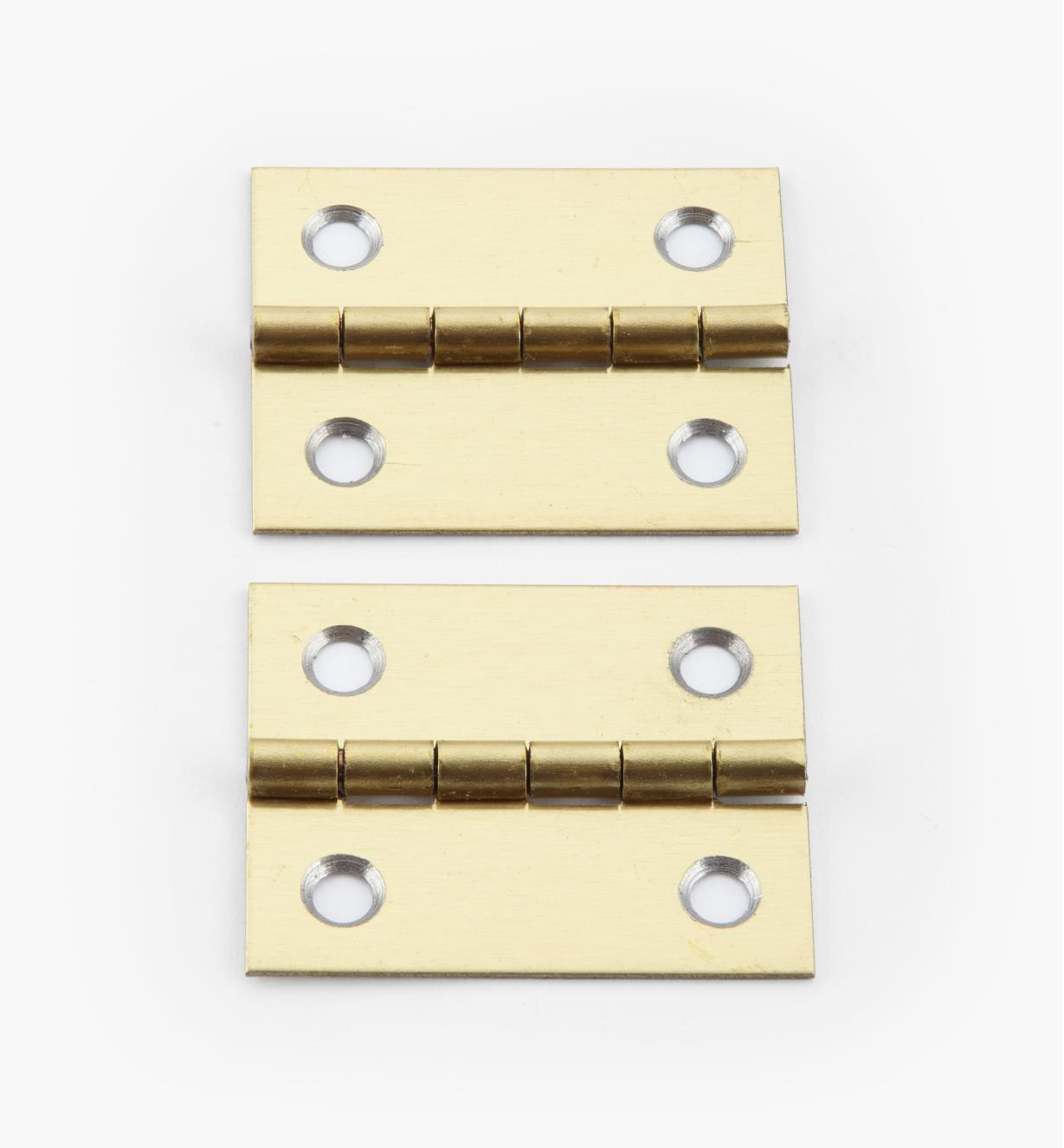 00D3021 - 30mm x 26mm Small Box Hinges, pr.