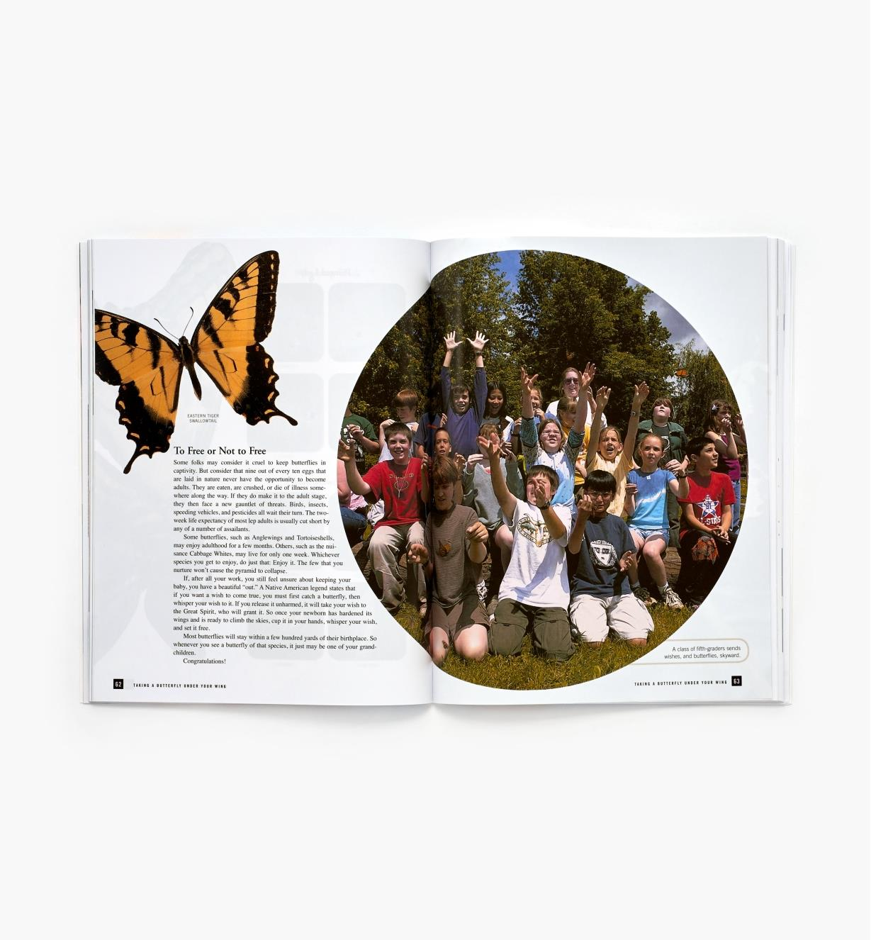 LA223 - The Family Butterfly Book