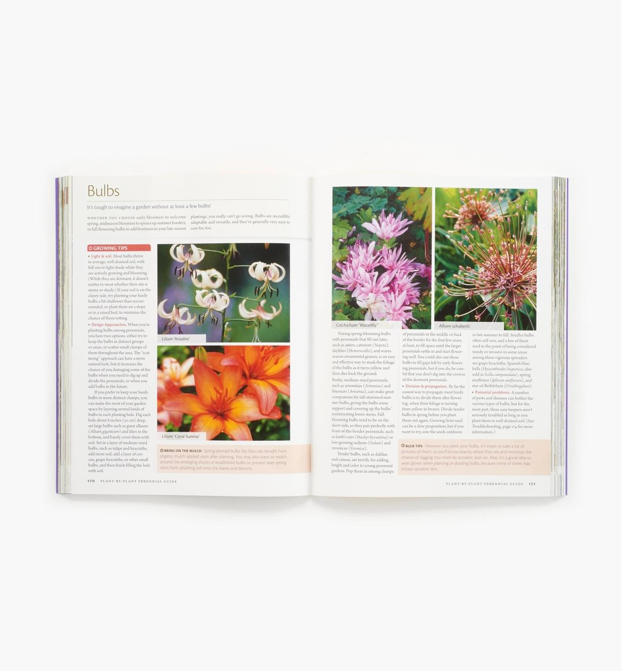 LA934 - The Perennial Care Manual
