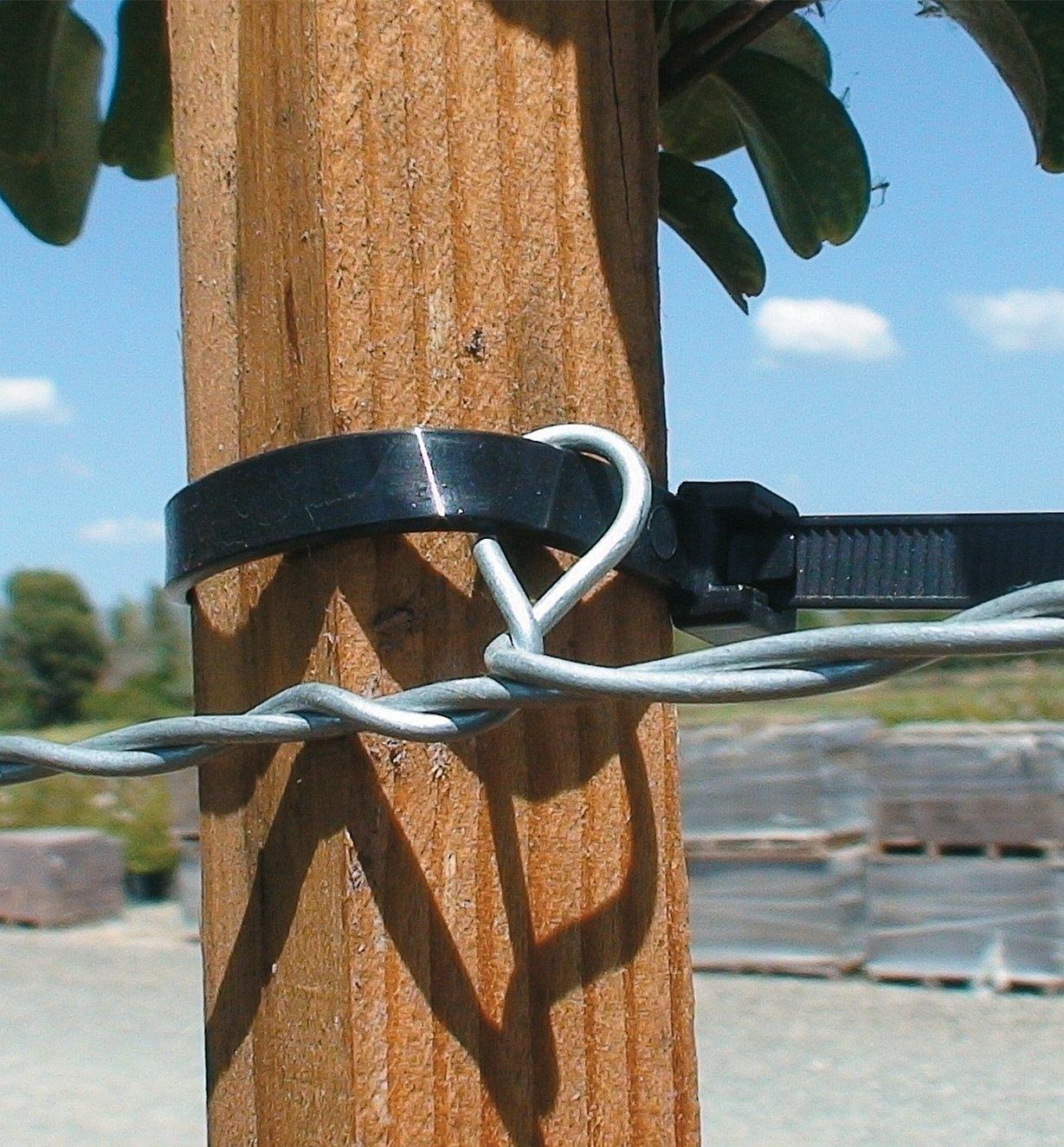 PA305 - Câble de métal à boucles pour treillis, 50 pi