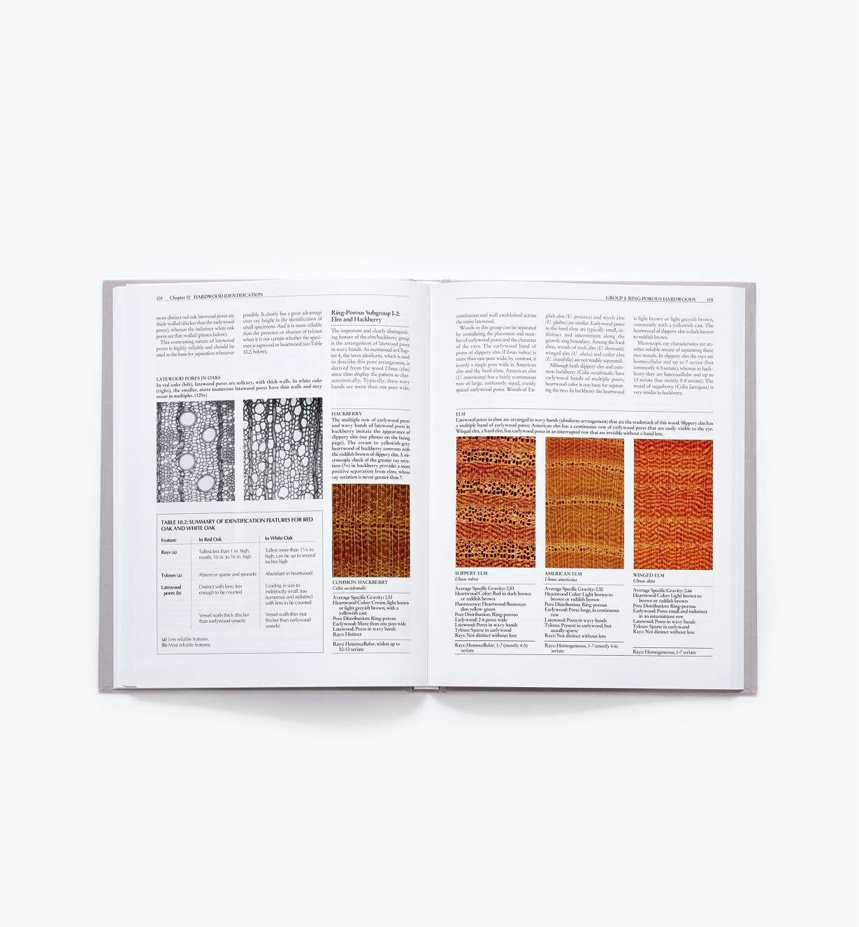 73L0117 - Identifying Wood