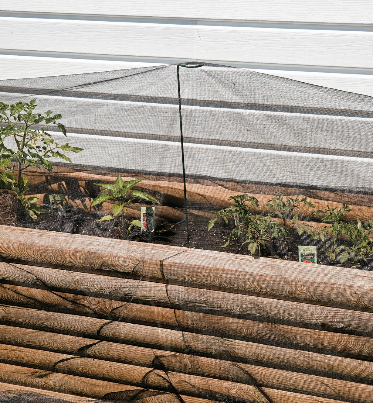 Mosquito Netting used to cover plants in a raised-bed garden