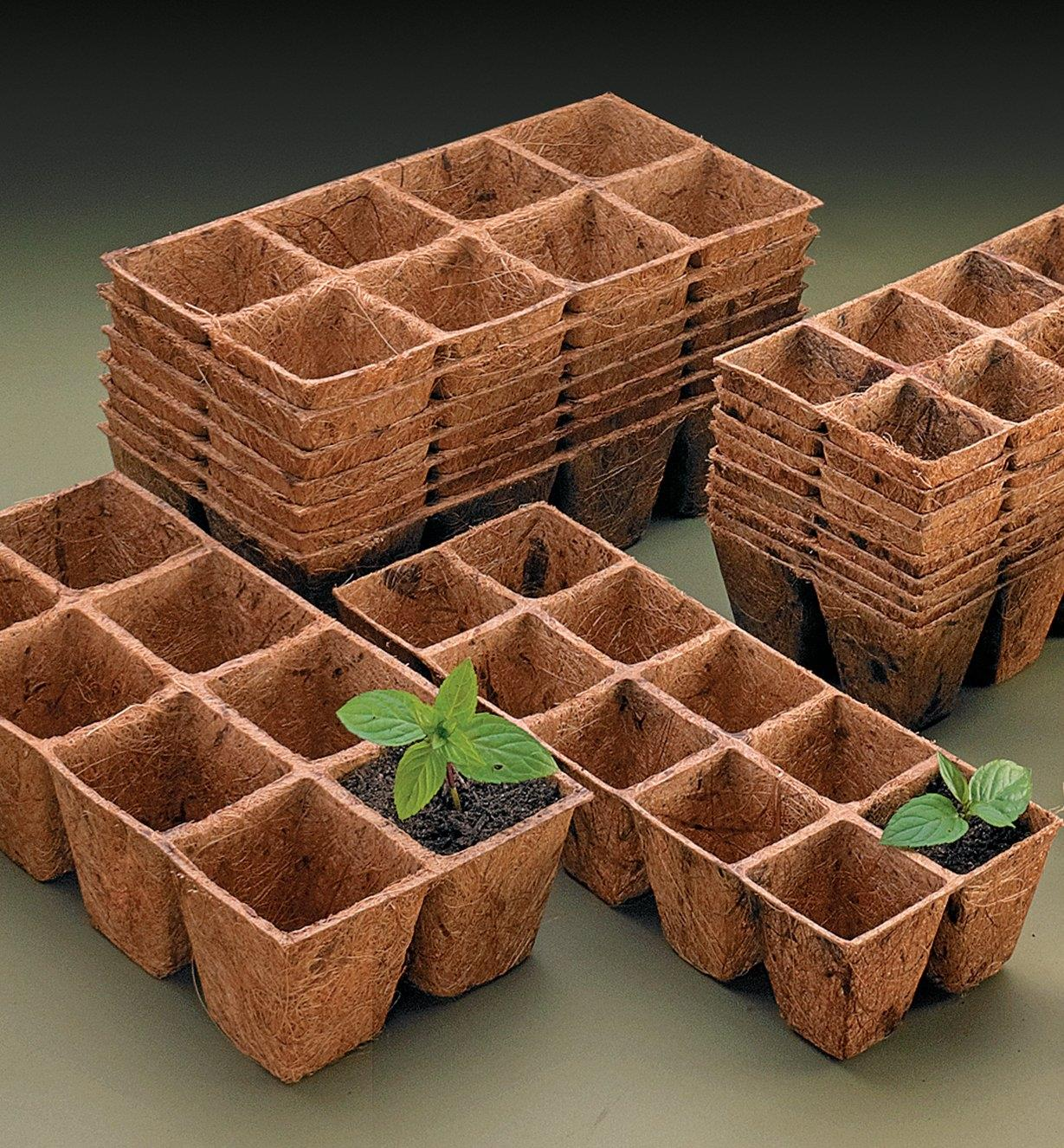 Coir Containers