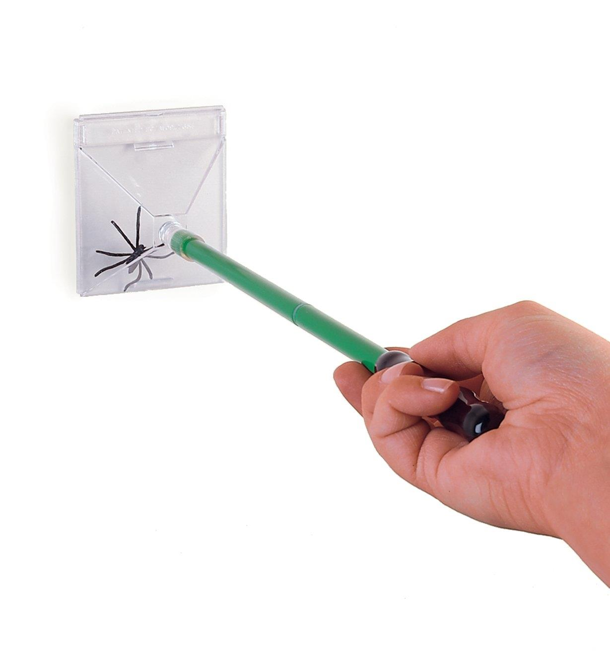 Bug Trapper trapping a spider against a wall
