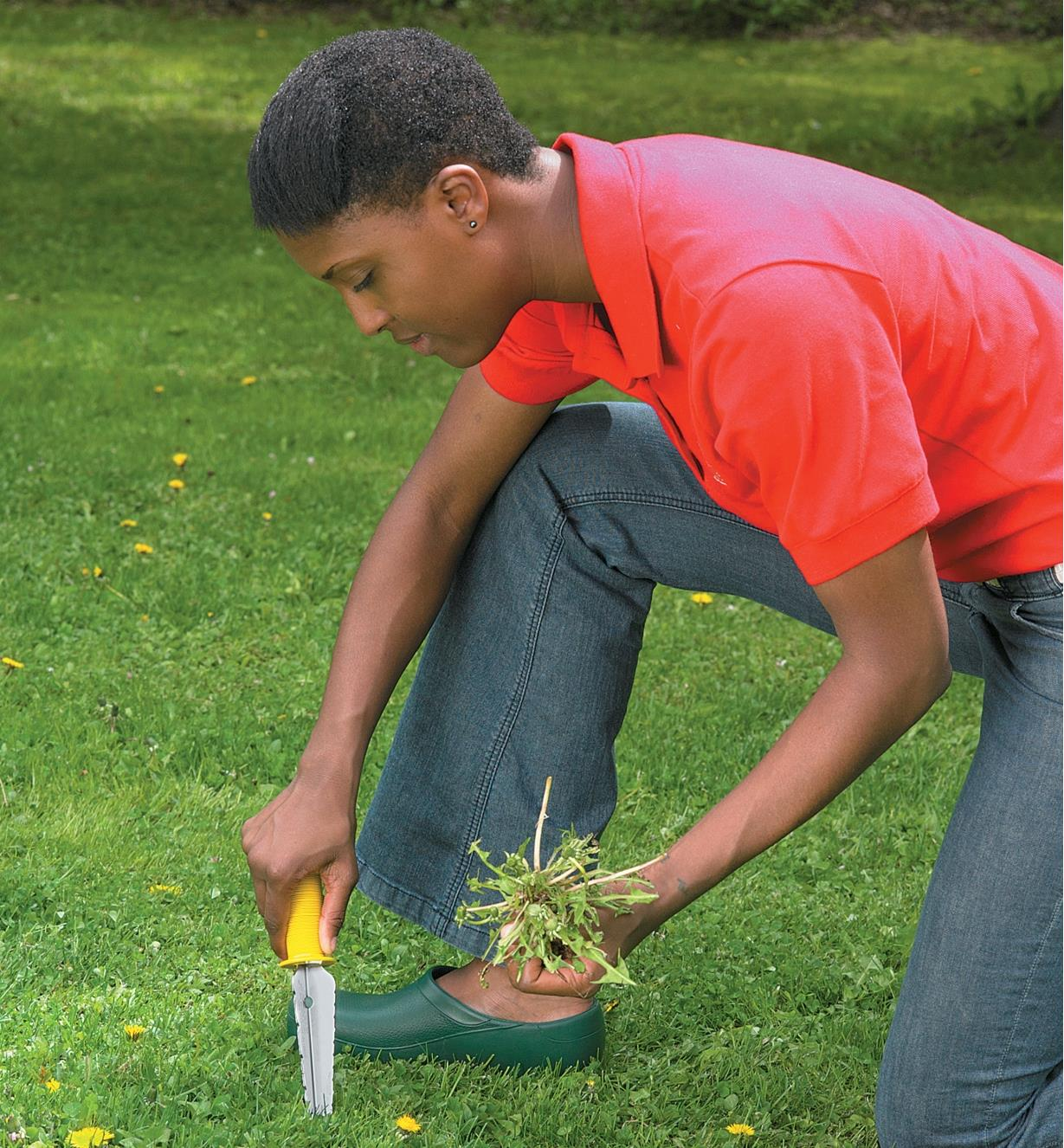 A woman uses the All-Purpose Lifetime Weeder to remove a weed from a lawn