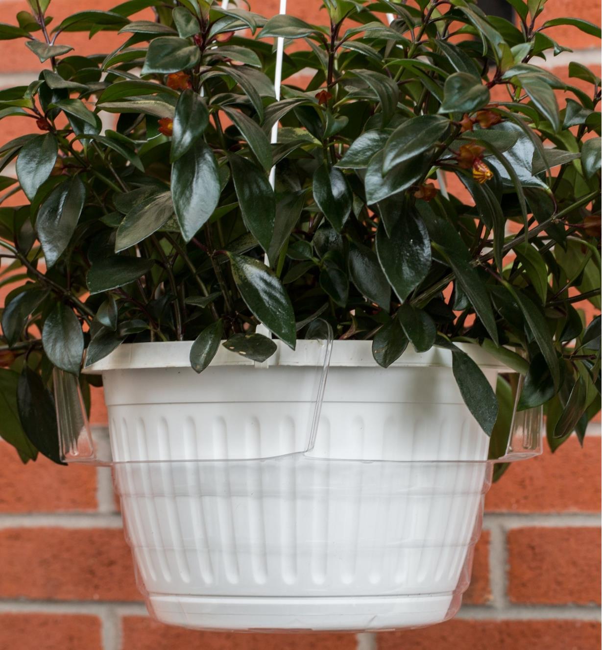 XB691 - Réservoir pour jardinière