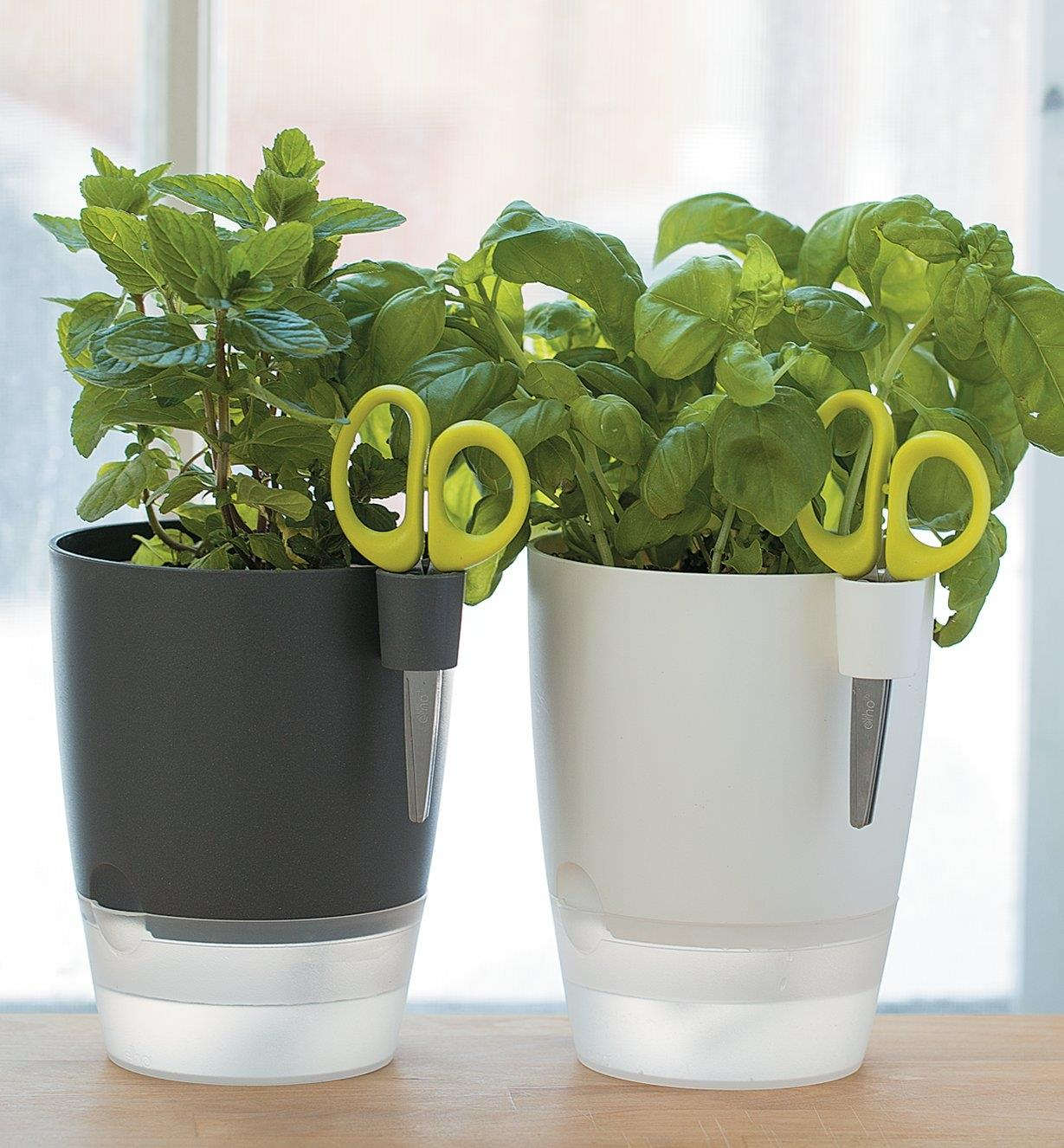Elho Windowsill Herb Pot