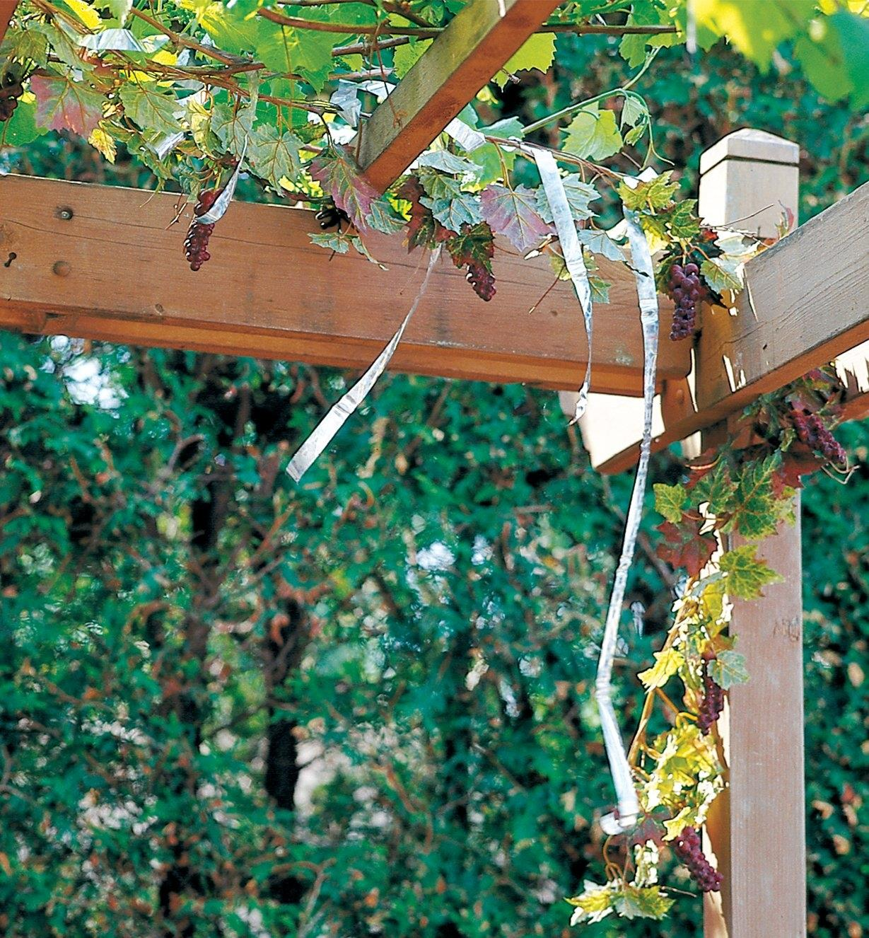 Holographic Scare Tape hanging over grape vines on a trellis