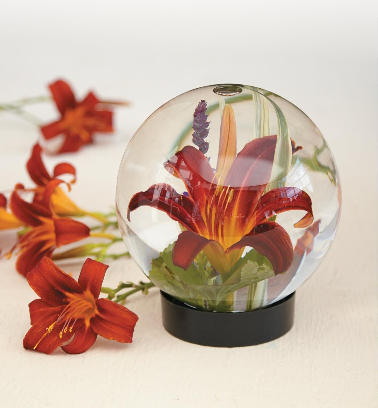 Hémérocalle dans un aquarium pour fleurs rempli d'eau