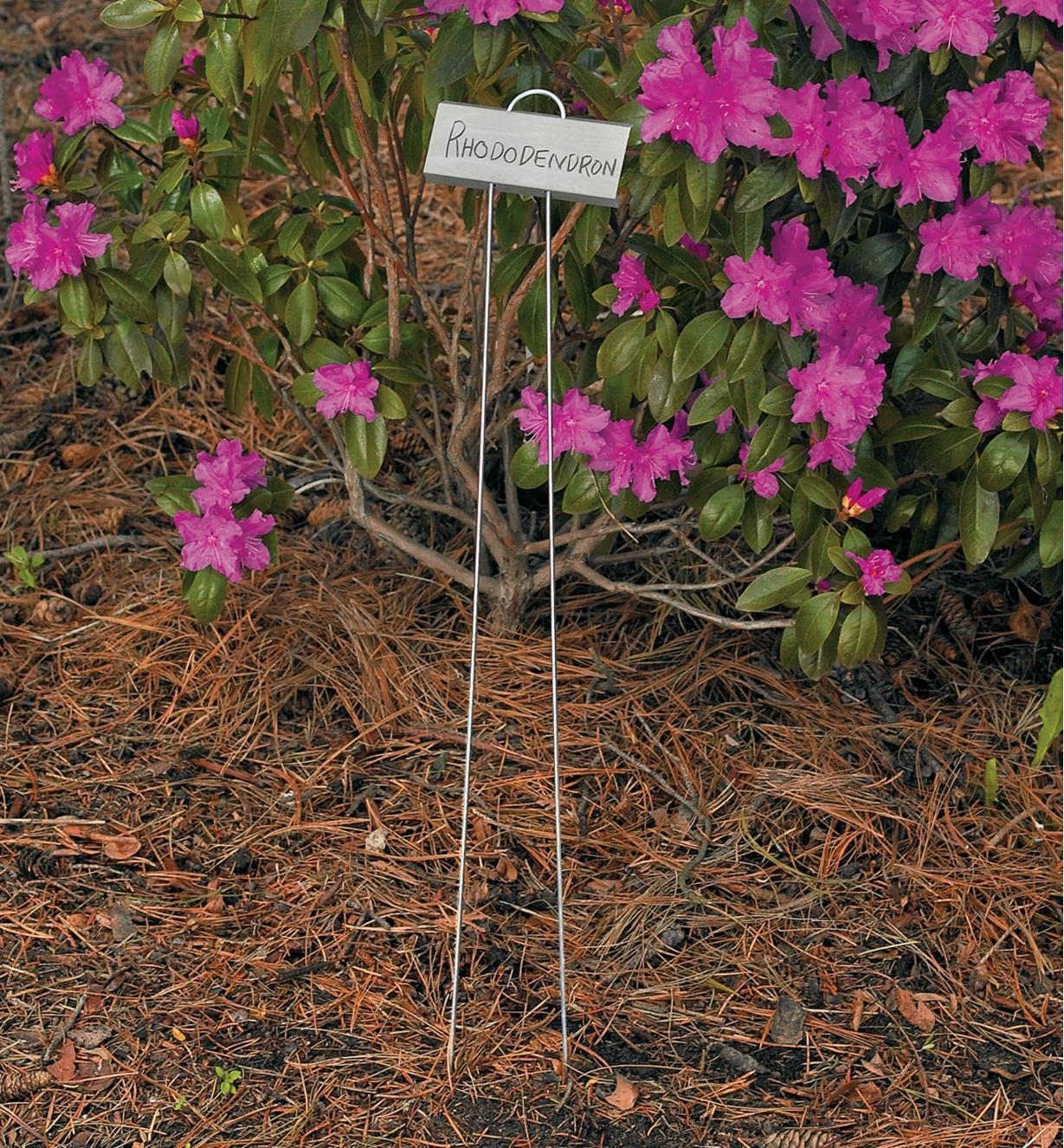 EA306 - Tall Rose Markers, set of 25