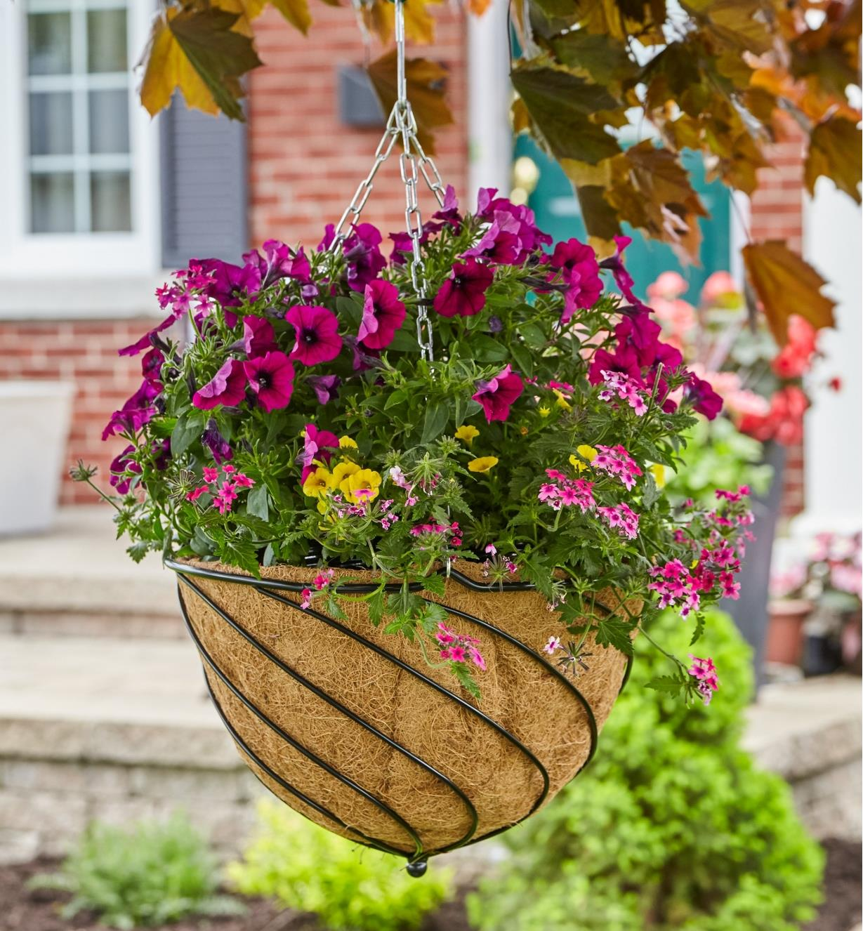 XB695 - Hanging Basket