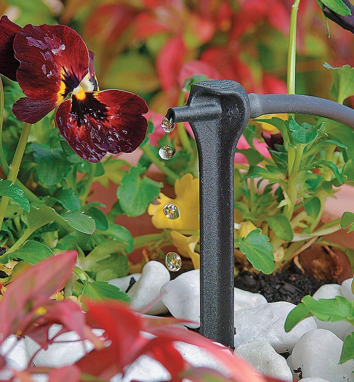 Piquets goutteurs produisant des gouttes d'eau dans un jardin floral