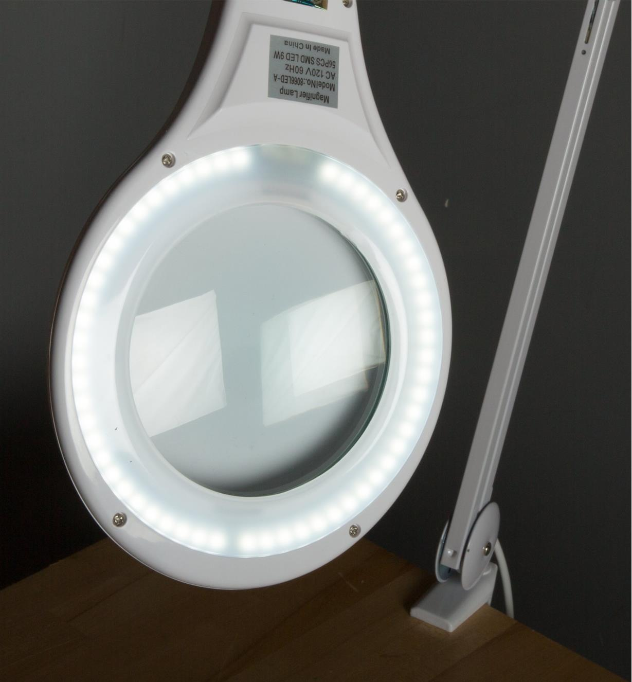 Underside view of lamp, showing LEDs
