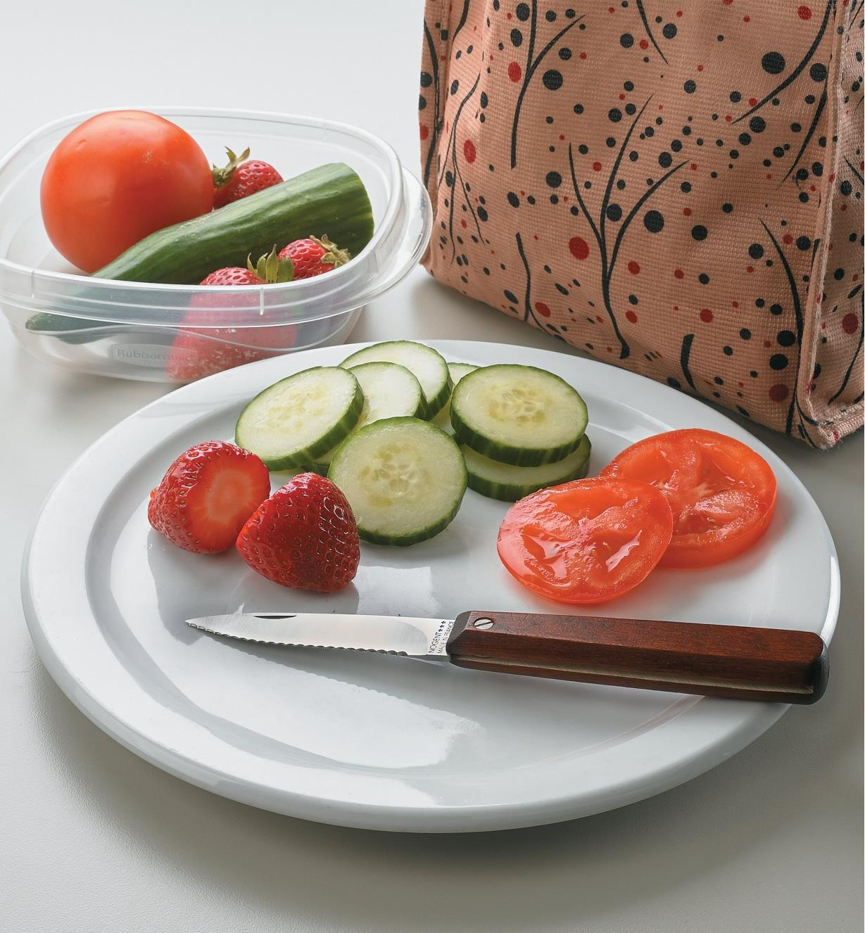 Lunchbox Pocket Knife sitting on a plate with sliced berries and vegetables next to a lunch bag