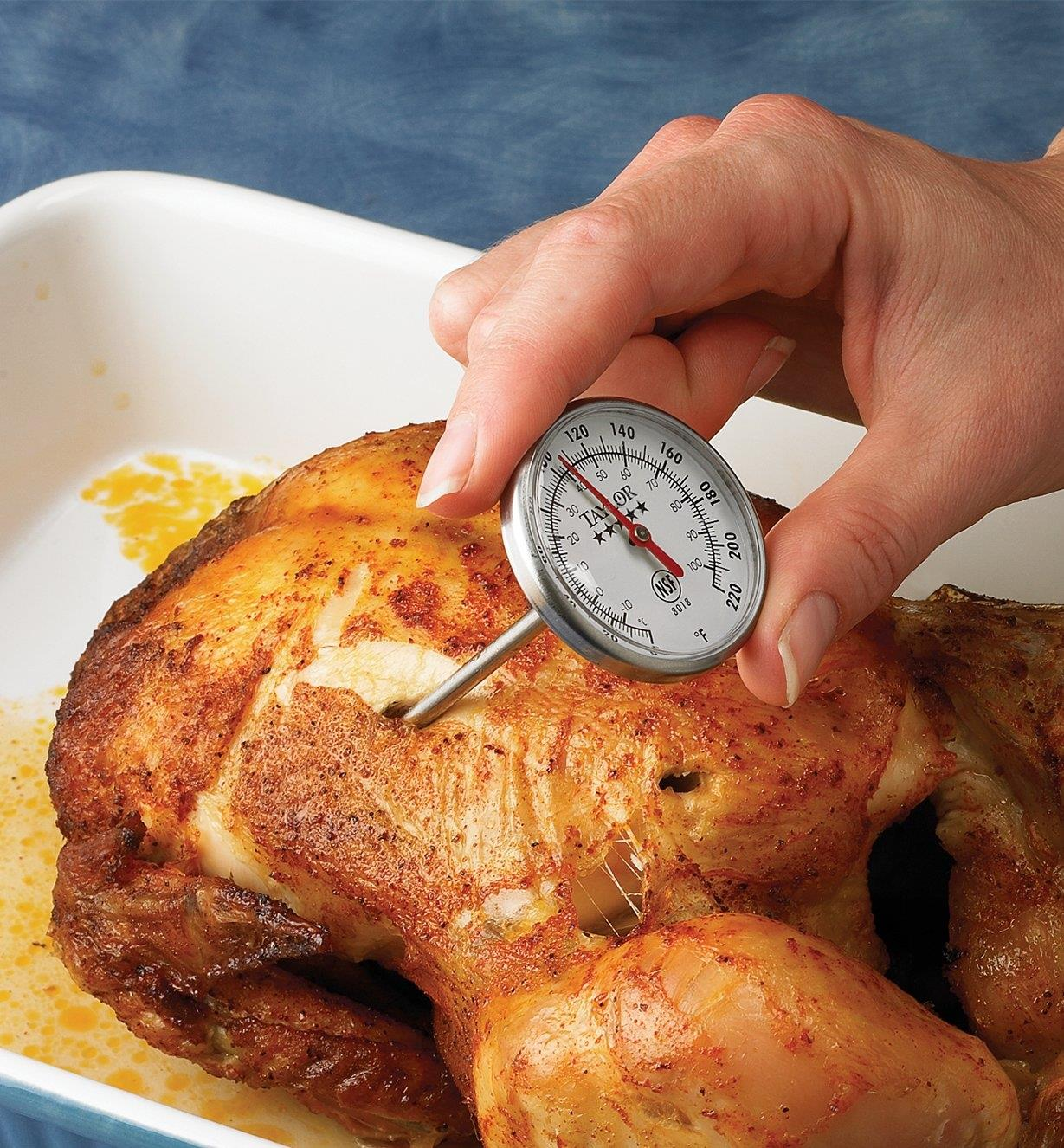 Instant-Read Thermometer inserted in a roast chicken