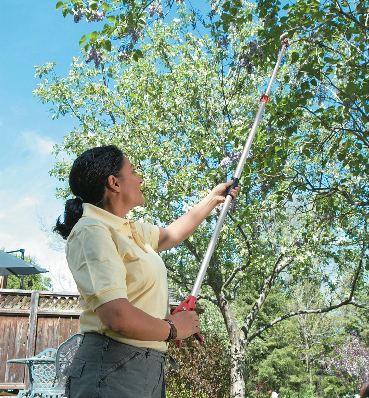 A woman uses the telescoping pruner to cut a high tree branch