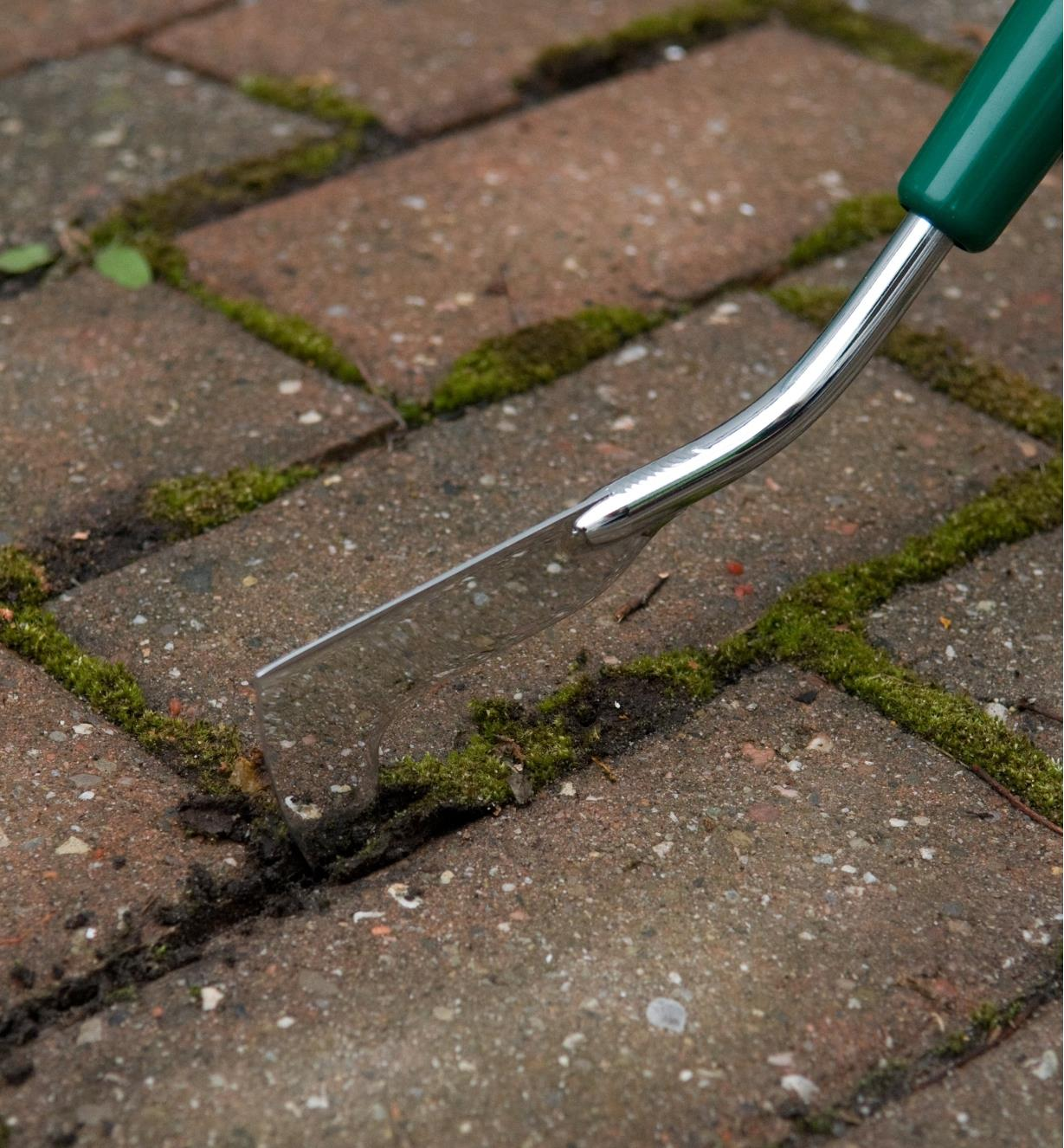 Close-up of Lee Valley Blade Cultivator removing moss from between paving stones