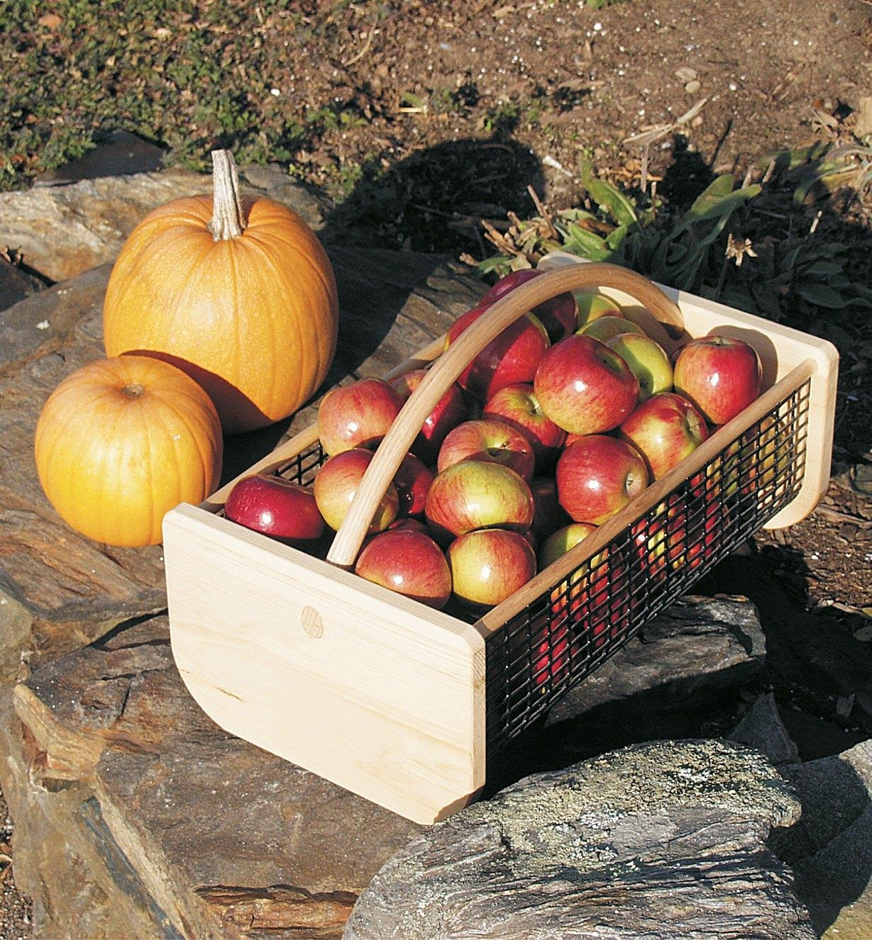 Large Maine garden hod filled with apples sits next to two pumpkins on some rocks